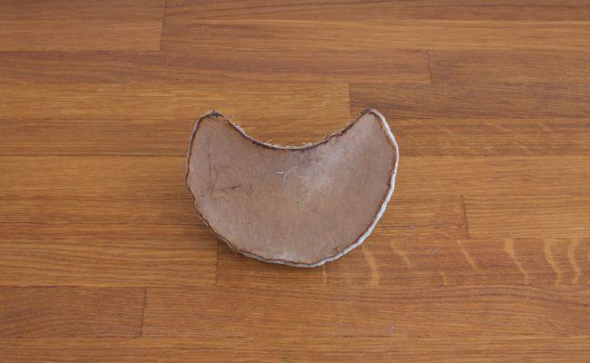 naturalnyy-berezovyy-grib-trutovik-razmer-3-foto-4