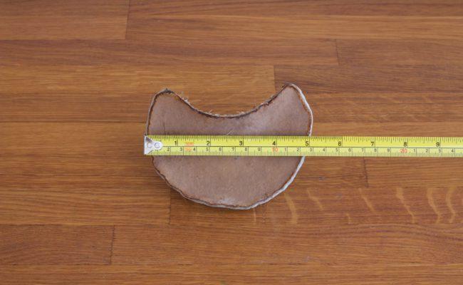 naturalnyy-berezovyy-grib-trutovik-razmer-3-foto-5